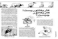 دانلود مقاله كاريكاتور چيست؟